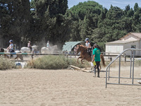 PONEY CLUB DES LOUVETS